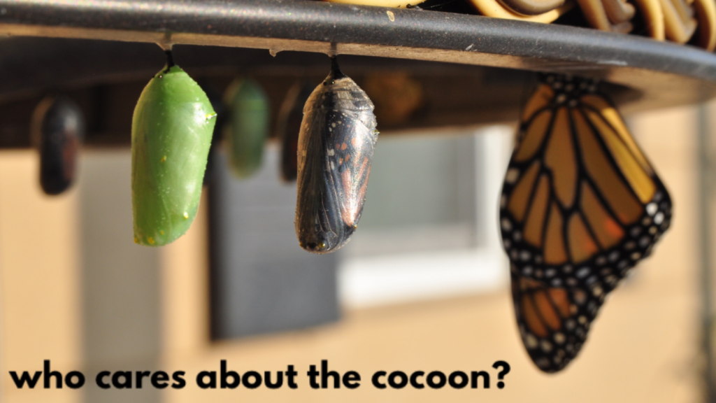Perimenopause - who really cares about the cocoon?